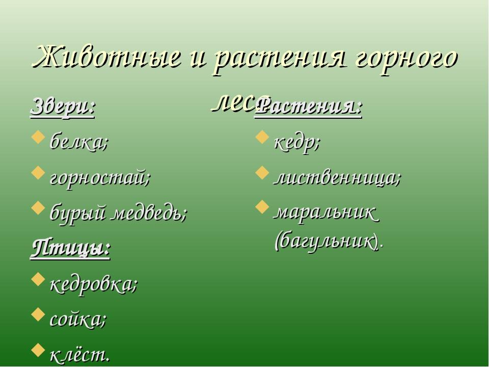 Животные и растения горного леса. Звери: белка; горностай; бурый медведь; Пти...