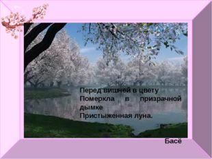 Перед вишней в цвету Померкла в призрачной дымке Пристыженная луна. Басё