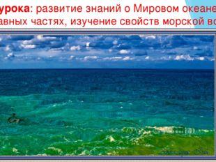 Цели урока: развитие знаний о Мировом океане, его составных частях, изучение