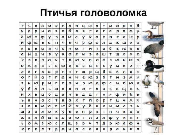 Птичья головоломка