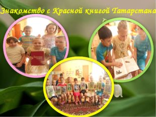 Знакомство с Красной книгой Татарстана