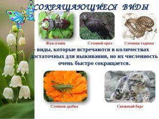 - виды, которые встречаются в количествах достаточных для выживания, но их чи