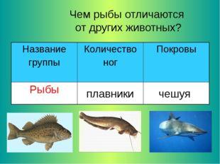 Чем рыбы отличаются от других животных? плавники чешуя Название группыКоличе