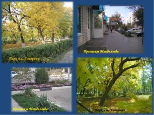 Парк им. Гагарина Парк им. Гагарина Проспект Менделеева Проспект Менделеева