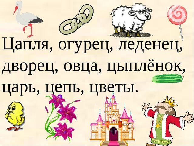 Цапля, огурец, леденец, дворец, овца, цыплёнок, царь, цепь, цветы.