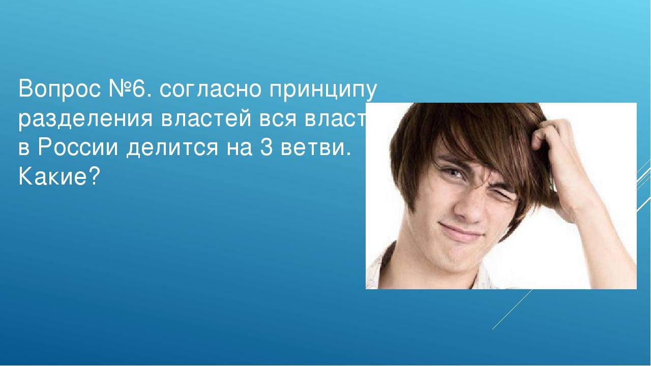Вопрос №6. согласно принципу разделения властей вся власть в России делится н...