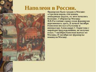 Наполеон в России. Французам было трудно в Москве: «стреляли ворон, ели кошек