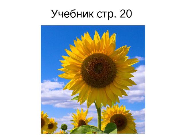 Учебник стр. 20