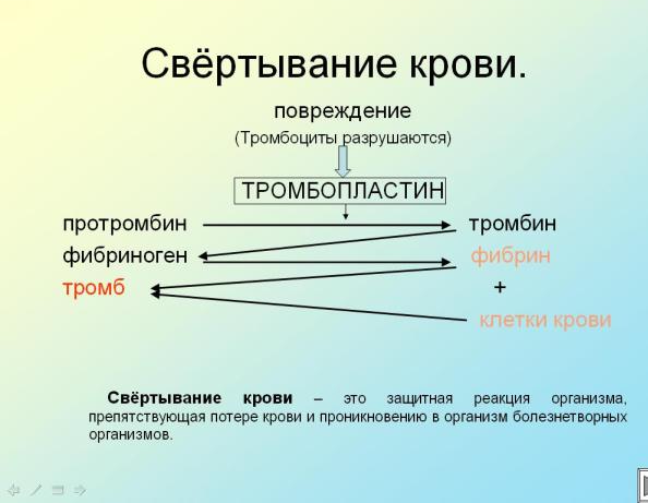 hello_html_m5b06093b.png