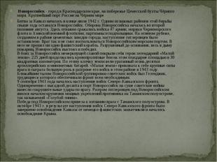 Новороссийск - город в Краснодарском крае, на побережье Цемесской бухты Чёрн