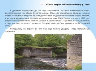 Остатки старой плотины на берегу р. Лавы В деревне Васильково до сих пор сохр
