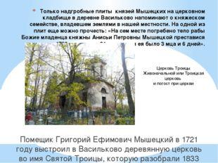 Только надгробные плиты князей Мышецких на церковном кладбище в деревне Васил