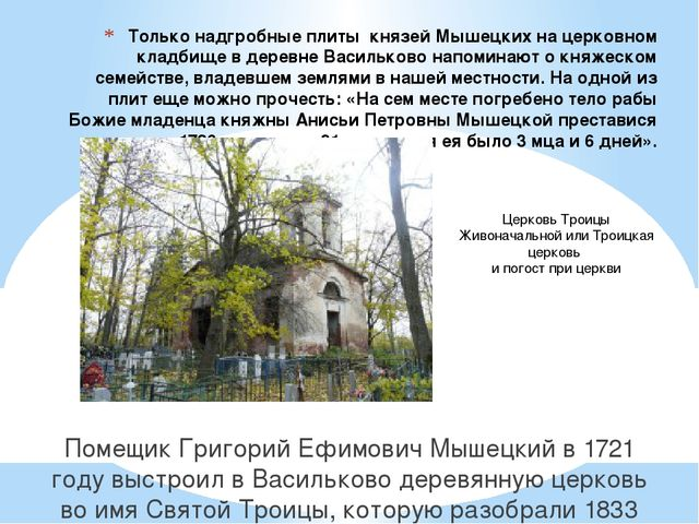 Только надгробные плиты князей Мышецких на церковном кладбище в деревне Васил...