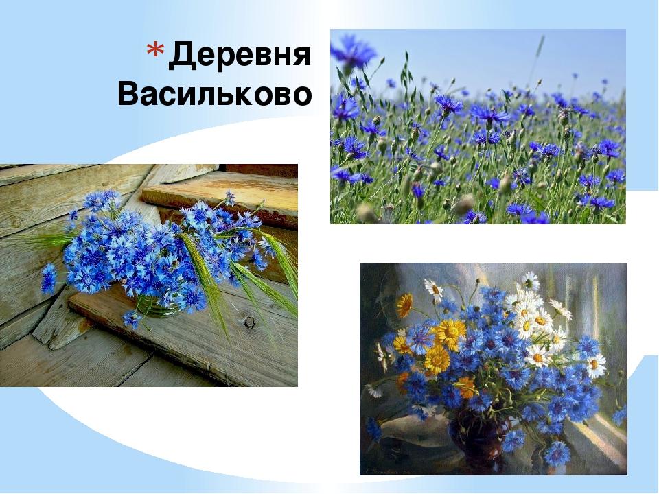 Деревня Васильково
