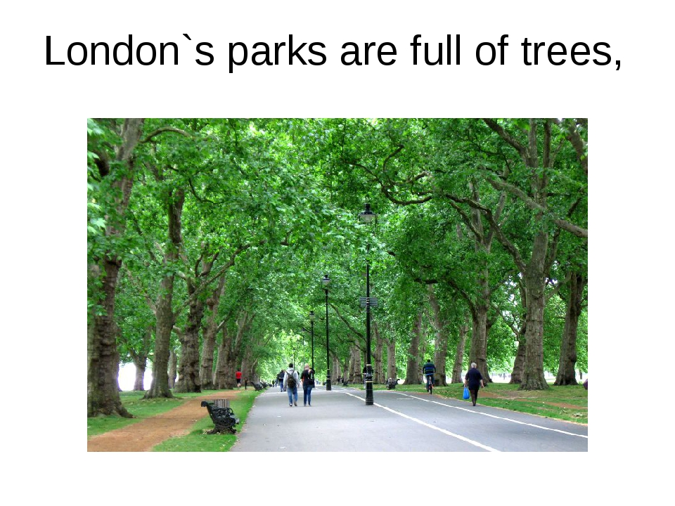 London`s parks are full of trees,