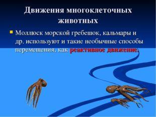 Движения многоклеточных животных Моллюск морской гребешок, кальмары и др. исп