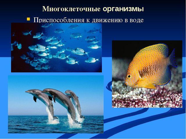 Многоклеточные организмы Приспособления к движению в воде