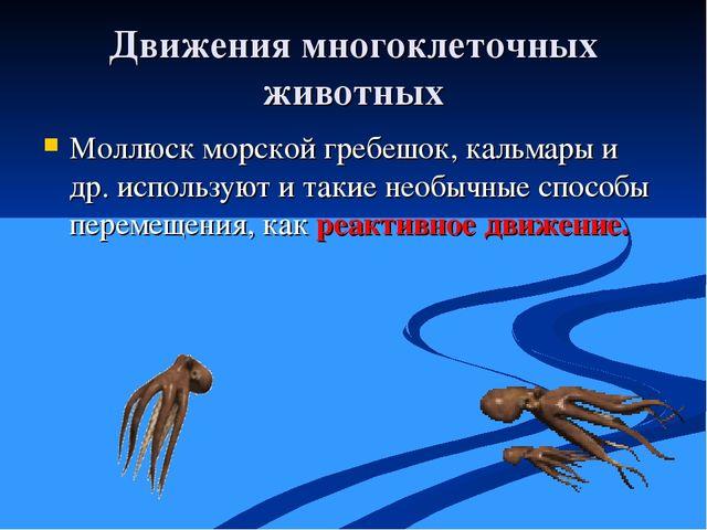 Движения многоклеточных животных Моллюск морской гребешок, кальмары и др. исп...