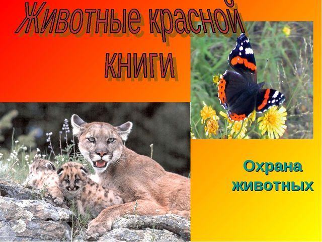 Охрана животных Prezentacii.com