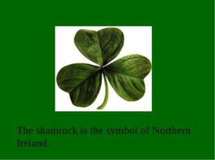 The shamrock is the symbol of Northern Ireland.