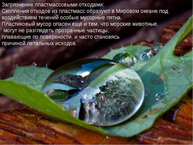 Загрязнение пластмассовыми отходами: Скопления отходов из пластмасс образуют...