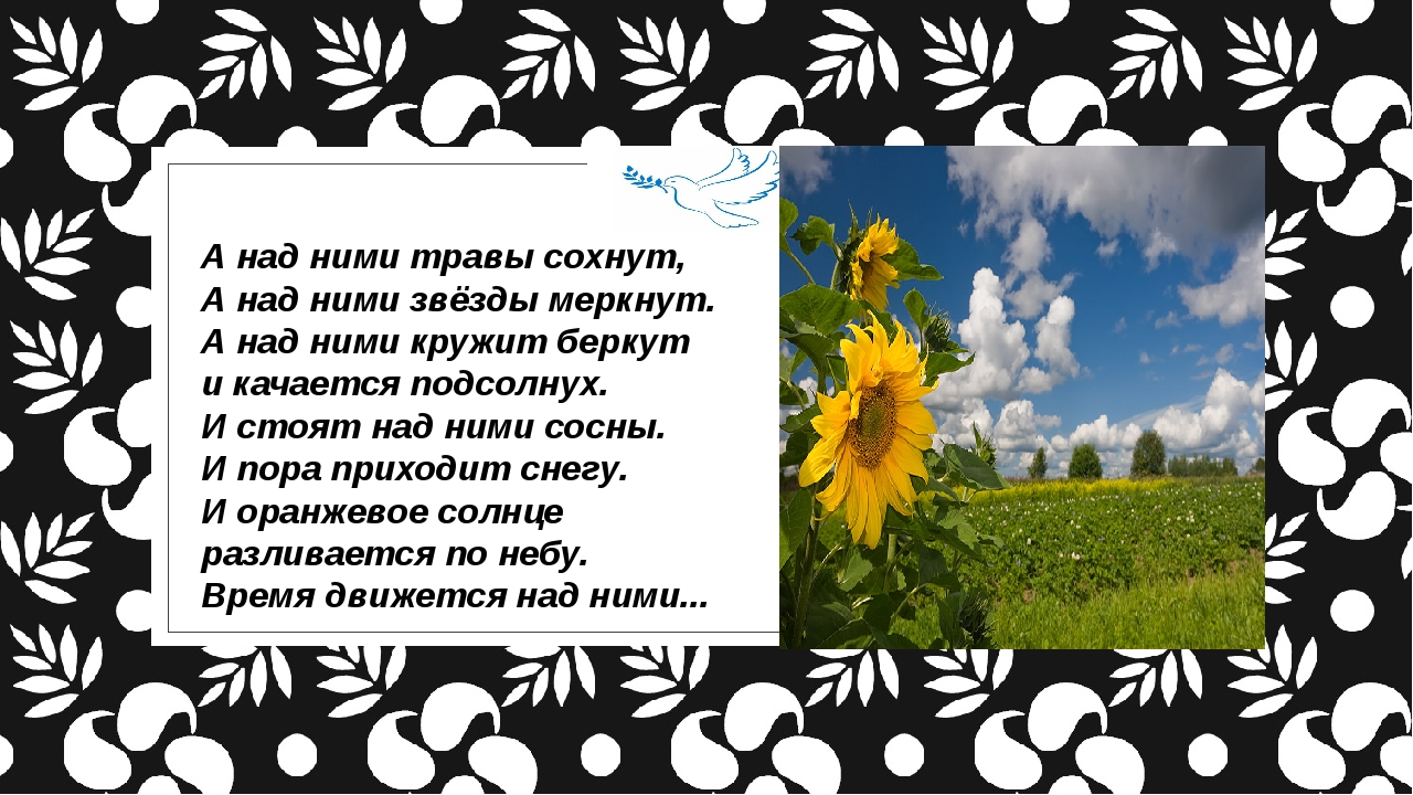 А над ними травы сохнут, А над ними звёзды меркнут. А над ними кружит беркут...