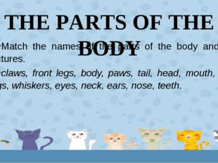 THE PARTS OF THE BODY Match the names of the parts of the body and the pictur