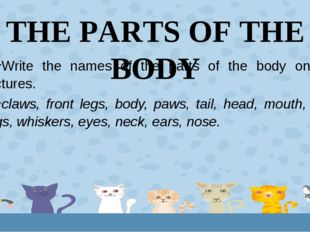 THE PARTS OF THE BODY Write the names of the parts of the body on the picture