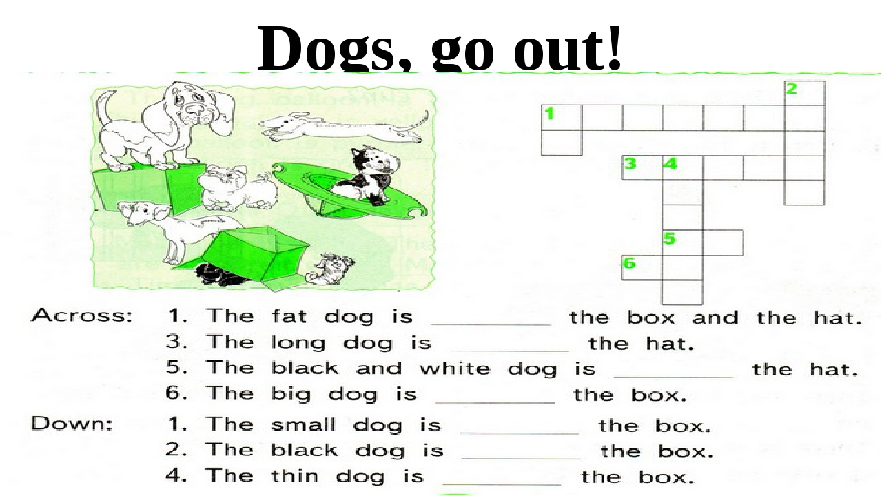 Dogs, go out!