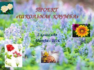 ПРОЕКТ «ШКОЛЬНАЯ КЛУМБА» 2 класс «А» Москва - 2014