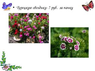 Турецкую гвоздику- 7 руб. за пачку