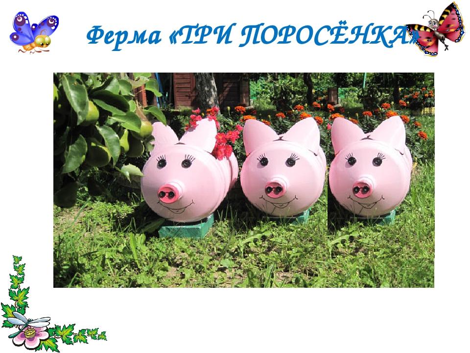 Ферма «ТРИ ПОРОСЁНКА»