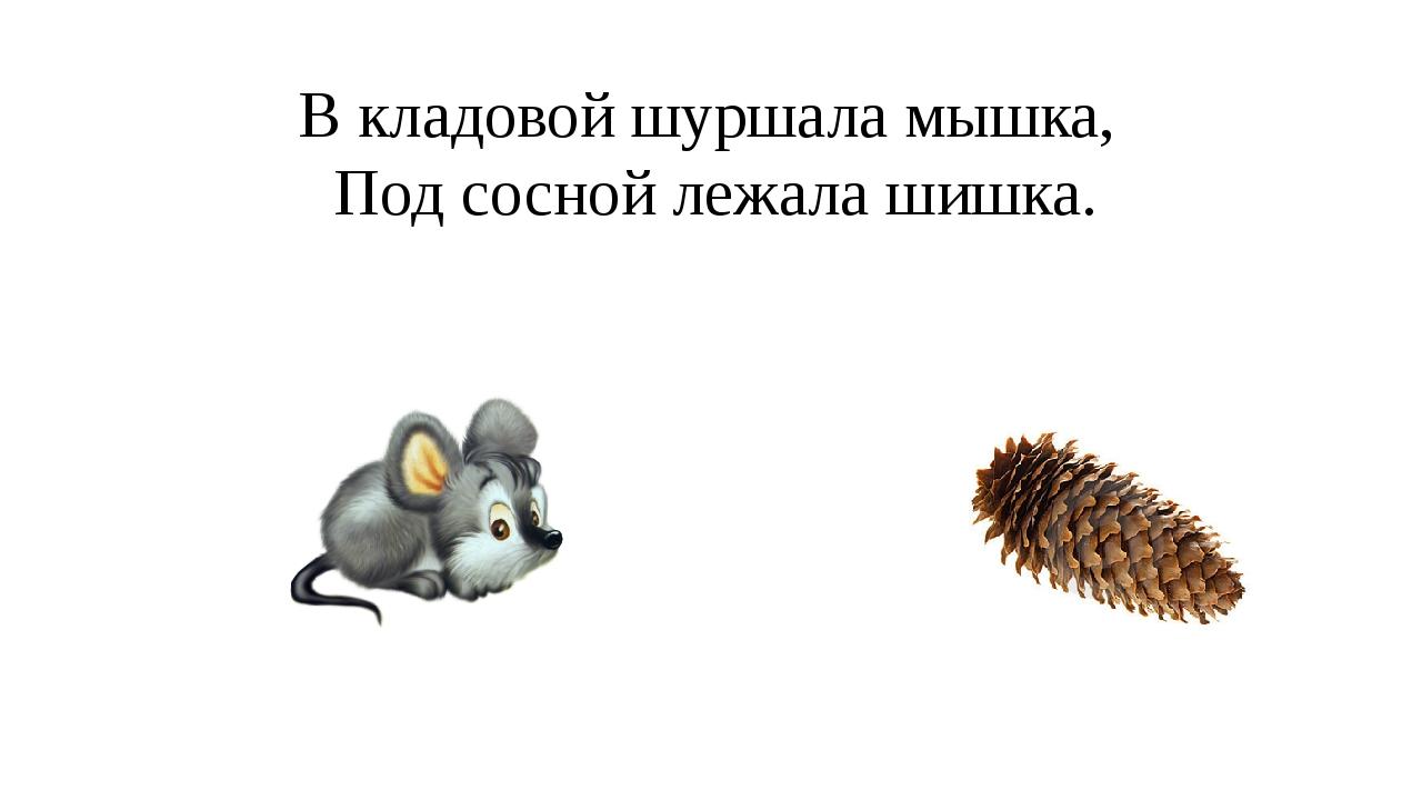 В кладовой шуршала мышка, Под сосной лежала шишка.