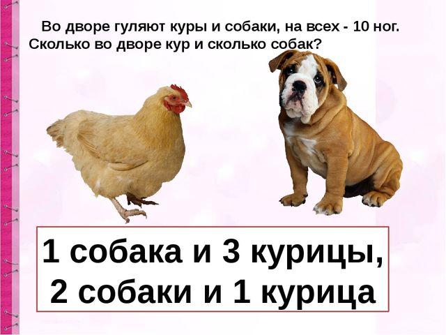 Во дворе гуляют куры и собаки, на всех - 10 ног. Сколько во дворе кур и скол...