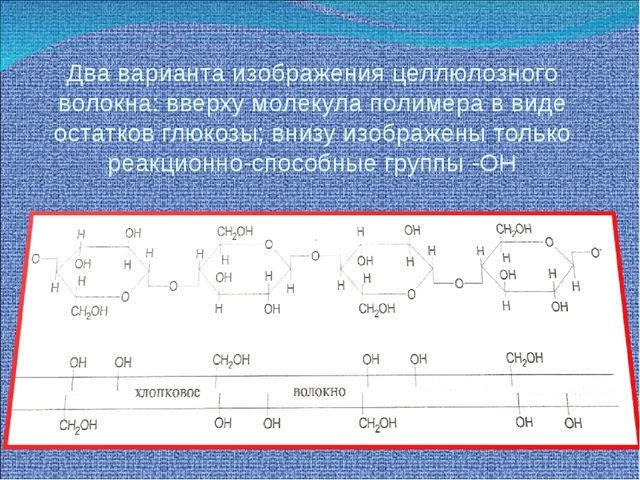 Два варианта изображения целлюлозного волокна: вверху молекула полимера в вид...