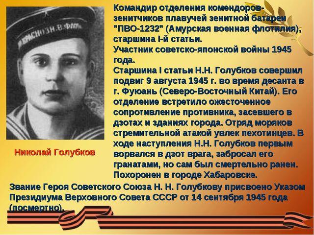 Николай Голубков Командир отделения комендоров-зенитчиков плавучей зенитной б...