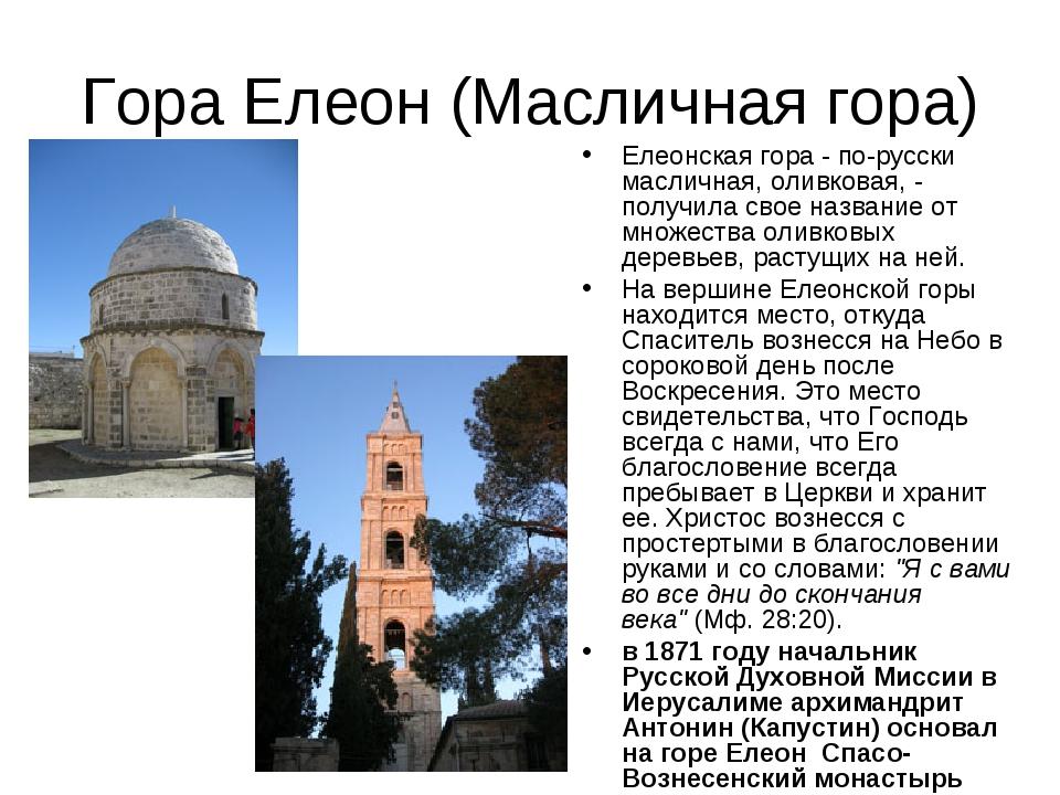 Гора Елеон (Масличная гора) Елеонская гора - по-русски масличная, оливковая,...