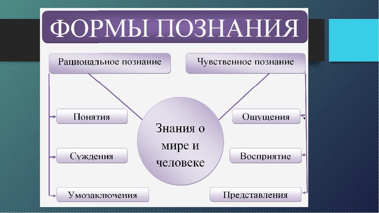 Схема развернутого плана по обществознанию