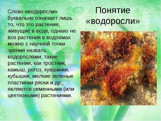 Понятие «водоросли» Слово «водоросли» буквально означает лишь то, что это рас...
