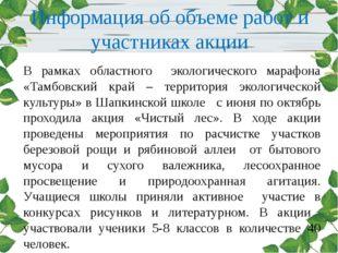 Информация об объеме работ и участниках акции В рамках областного экологическ