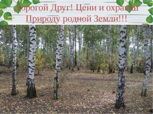 Дорогой Друг! Цени и охраняй Природу родной Земли!!!