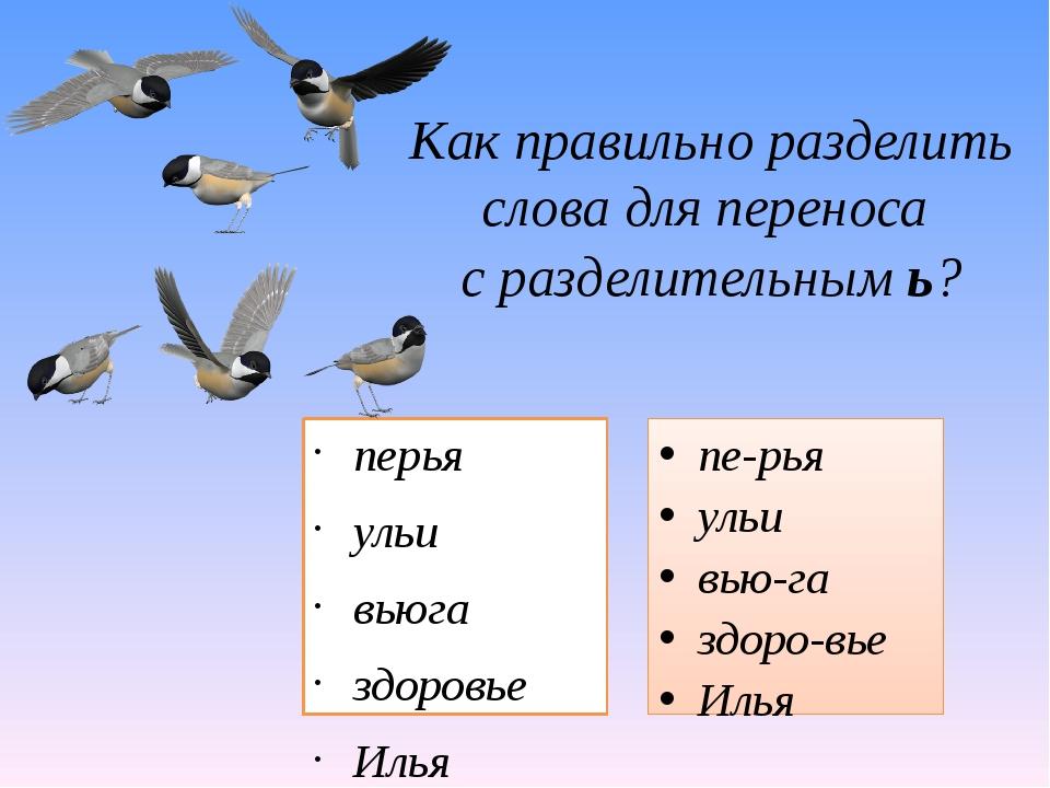 Как правильно разделить слова для переноса с разделительным ь? перья ульи вью...