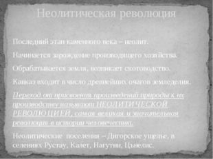 Неолитическая революция Последний этап каменного века – неолит. Начинается за