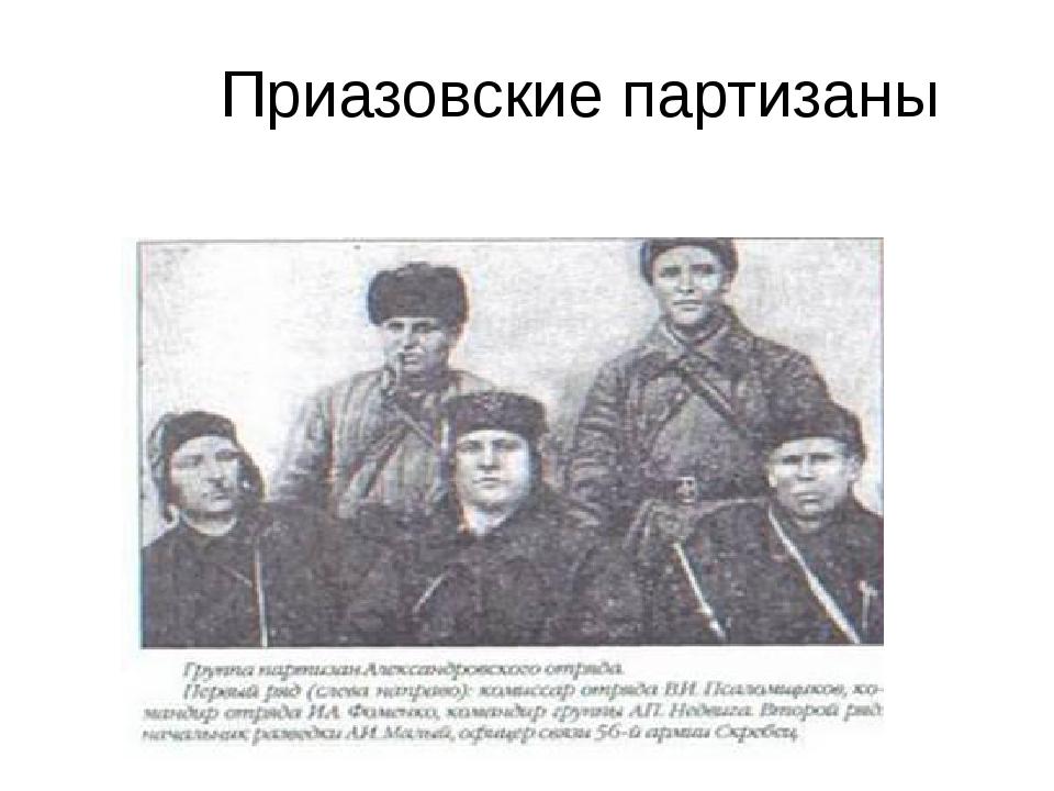 Приазовские партизаны