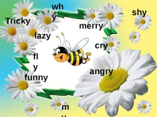angry funny my fly lazy shy why merry cry Tricky