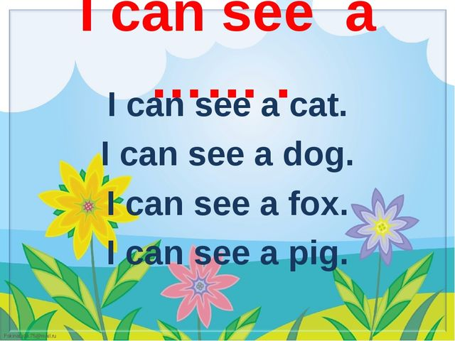 I can see a cat.