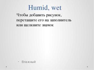 Humid, wet Влажный