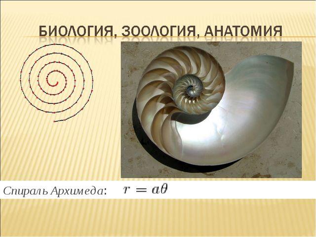 Спираль Архимеда: