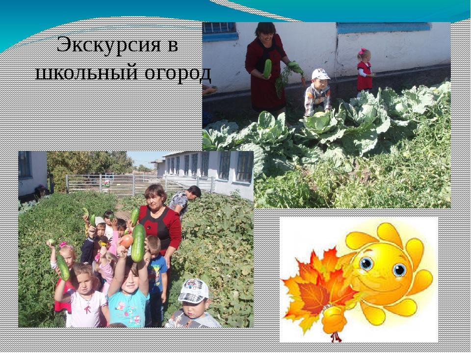 Экскурсия в школьный огород