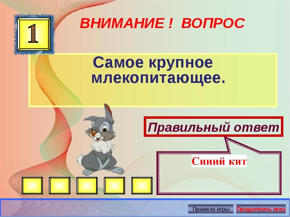 ВНИМАНИЕ ! ВОПРОС Самое крупное млекопитающее. Правильный ответ Автор: Русско...